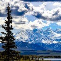 Grupplogga för Läs med Järna bibliotek: Himmel över Alaska