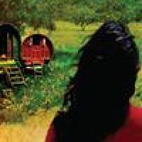 Grupplogga för Bokcirkel om Cecilia Samartins böcker Senor Peregrino och La Peregrina